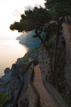 Via Krupp, Capri, Campania, Italy ... Looks like a nice place for a walk or bike ride! :)
