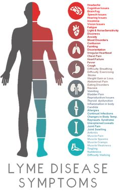 Lyme Symptoms Infographic   From Lyme and the City