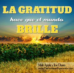 La gratitude hace que el mundo brille! del libro La Experiencia del Alma Gemela: Una guía práctica para crear relaciones extraordinarias