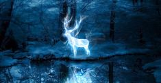 J.K. Rowling reveals that a Patronus quiz will be coming to ...