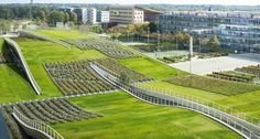 green design - Green roofs are changing architecture Here's a whole school built under an undulating green roof Roofing Options, Roofing Systems, Roofing Materials, Green Architecture, Sustainable Architecture, Sustainable Design, Residential Architecture, Contemporary Architecture, Architecture Design