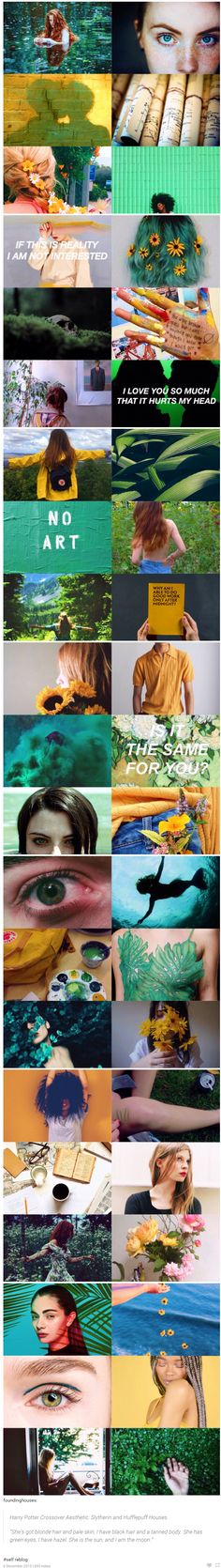 """foundinghouses:  Harry Potter Crossover Aesthetic: Slytherin and Hufflepuff Houses  """"She's got blonde hair and pale skin, I have black hair and a tanned body. She has green eyes, I have hazel. She is the sun, and I am the moon."""""""