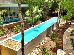 Love this contemporary lap pool