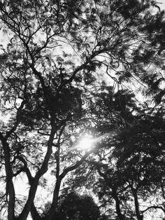 Un rayo de luz como esperanza.