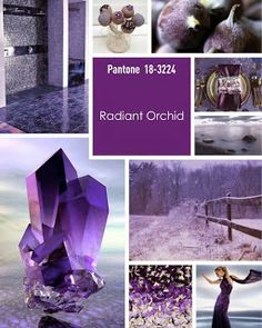 Radiant Orchid - Radiant Orchid