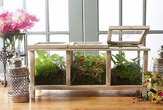 little greenhouse box