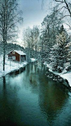 Winter Stream Winter Scene