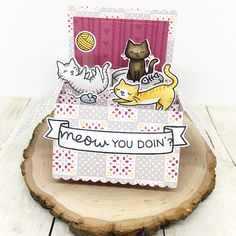 Risultati immagini per lawn fawn meow you doin card Pop Up Box Cards, Card Boxes, Diy And Crafts, Paper Crafts, Lawn Fawn Stamps, Cat Cards, Greeting Cards, Scrapbook Cards, Scrapbooking Ideas