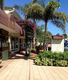 Exploring Vero Beach Oceanside Business District. Florida Trips, Florida Travel, Places Ive Been, Places To Go, Vero Beach Florida, Beach Town, Sunshine State, Vacation Places, Walking Tour