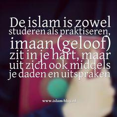 De islam is zowel studeren als praktiseren, imaan (geloof) zit in je hart, maar uit zich ook middels je daden en uitspraken - www.islam-blog.nl