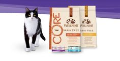 Grain-Free Kitty Treats: Wellness Natural Pet Food Creates Healthy Low Calorie Cat Snacks