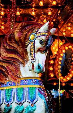 merry-go-round photo