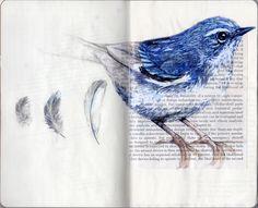 Blue bird sketch art journals ideas for 2019 Sketchbook Inspiration, Art Sketchbook, Magazine Deco, Bird Sketch, Book Page Art, Guache, Nature Journal, Bird Drawings, Watercolor Bird