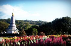 Doi Inthanon National Park - national park in northern #Thailand, and includes the highest mountain in Thailand - Doi Inthanonas (2576 m). Dominated: Evergreen forest; Mountain forests; Mixed forest; Deciduous forests.