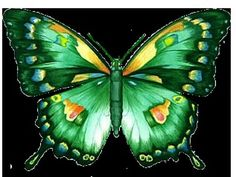 A smile makes us look younger; while prayer make us feel stronger . Flying Flowers, Paper Butterflies, Beautiful Butterflies, Butterfly Drawing, Butterfly Baby, Butterfly Wings, Butterfly Design, Art Papillon, Image 3d