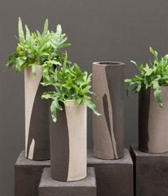 Eco-Friendly-and-Unique-Ceramic-Planters-for-Living-Room-Accessories