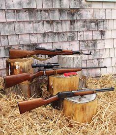 Best Guns for Homestead Use