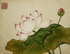 picture Source by Lilies Drawing, Japanese Art, Drawings, Painting, Watercolor And Ink, Art, Korean Painting, Pictures, Ink Painting