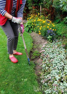 Kanttausraudalla  tai suoralla lapion terällä nurmikon reuna on  helppo rajata siistiksi. Tee kanttauskierros pari, kolme kertaa kesässä.