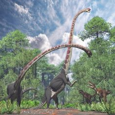 "*Omeisaurus and *Gasosaurus by PaleoGuy - (meaning ""Omei lizard"") is a genus of sauropod dinosaur from the Middle Jurassic Period (Bathonian-Callovian stage) of what is now China. Prehistoric Wildlife, Prehistoric Dinosaurs, Prehistoric World, Dinosaur Fossils, Dinosaur Art, Prehistoric Creatures, Reptiles, Mammals, Dinosaur Illustration"