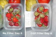 Fridg Tech DSP-30 filters keep fruits and veggies longer