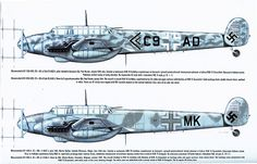 Messerschmitt Bf 110 color