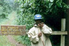 Un nuevo informe de la UNESCO pone de manifiesto cómo el cambio climático puede hacer peligrar algunos de los sitios más emblemáticos del planeta   El impenetrable Parque Nacional de Bwindi, Uganda
