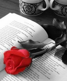 Rose Day SMS Shayri 2017   Rose Day SMS 2017  Sweeter than the candieslovelier than the red roses more hug gable than soft toys thats what youre heres wishing you a Rose Day thats as special as youre.  Beautiful Shayari English Poetry Flower Shayari Love Shayari SMS Shayari