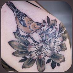 #goldfinch and #rhododendron shoulder piece by #kirstenholliday @onholliday #wonderlandpdx #wonderlandtattoo