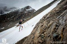 https://www.facebook.com/francois.dhaene/photos/a.535717996456539.135514.535594939802178/862865397075129/?type=1 François D'haene Ice-Trail Tarentaise 2014 winner