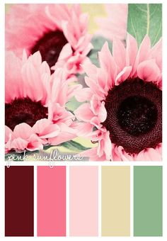 Gold On The Ceiling: Pink sunflowers