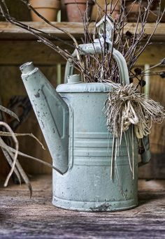 I have some beautiful red branches and grapevines that might just look good in a watering can like this!