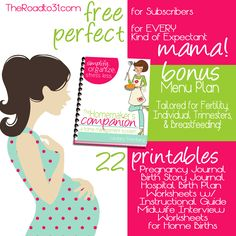 pregnancy journal template free - birth plan printable on pinterest birth plans labor and