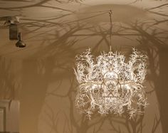 """""""Forms in Nature"""" Chandelier by HildenDiaz 