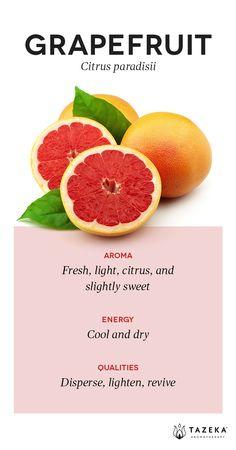 Grapefruit Profile | (Source: Aromatherapy For the Healing Spirit - Gabrial Mojay) http://www.tazekaaromatherapy.com/