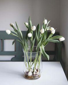 Pauline (@cloverhome.nl) • Instagram-foto's en -video's Tulips, Glass Vase, Blog, Instagram, Home Decor, Decoration Home, Room Decor, Blogging, Home Interior Design