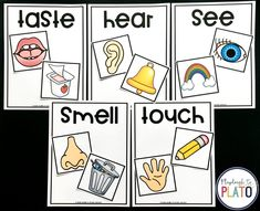 Activity for ages 4 to 6. The 5 senses are one of my favorite subjects to teach because it sparks so many fun discussions. As children learn about sight, sound, taste, smell and touch, they become much more aware of the world around. These playful sorting mats are great to use for review at the …