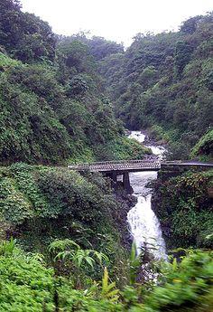 Hana Highway in Maui..Beautiful!!!!