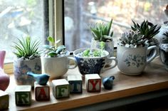 """My Great Aunt Altie used to have gorgeous """"chip n dent"""" potted plants all over her big country porches. She always used a variety of household cast offs: china tea cup, chipped fruit bowl, old teapot, kettles, etc. It was lovely. Wish I had a picture!"""