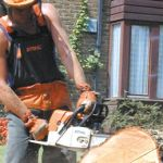 Tree Surgeons, Garden Maintenance, Garden Trees, Health And Safety, 20 Years, Outdoor Power Equipment, Landscaping, Places To Visit, Quotes