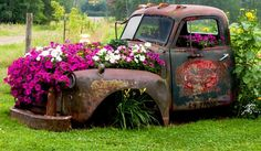flower filled old trucks - Google Search