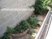 All about outdoor box turtle housing Russian Tortoise Care, Tortoise As Pets, Tortoise House, Tortoise Habitat, Turtle Habitat, Reptile Habitat, Tortoise Turtle, Turtle Enclosure, Outdoor Box
