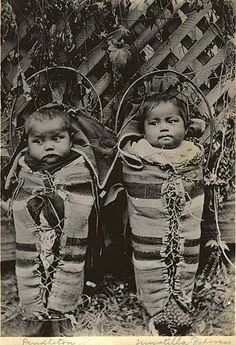 Cayuse twins in cradleboards, October 2, 1898 - Created/Published 1898 - United States--Oregon--Pendleton - Lee Moorhouse, photographer