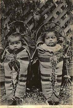 Cayuse twins in cradleboards, October 2, 1898 - Created/Published 1898 - United States--Oregon--Pendleton - Lee Moorhouse, photographer