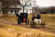 Image result for IMAGES AMISH FARMS