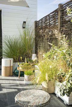 Fabriquer un brise vue en bambou comment bambou et cl ture - Plante brise vue terrasse ...