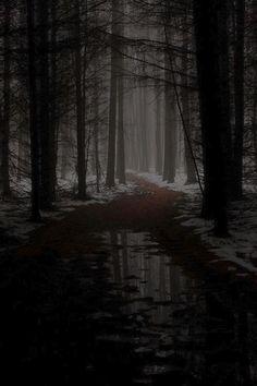 autumn, creepy, and dark afbeelding