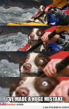 Poor puppy
