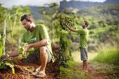 Start Your Own Organic Farm - http://www.organicfarmingblog.com/start-organic-farm/