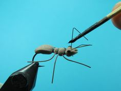 Fly Tying Nation: Foamular of Jungle Ants